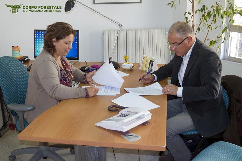 Ufficio Di Esecuzione Penale Esterna : Corpo forestale e ufficio di esecuzione penale insieme per le