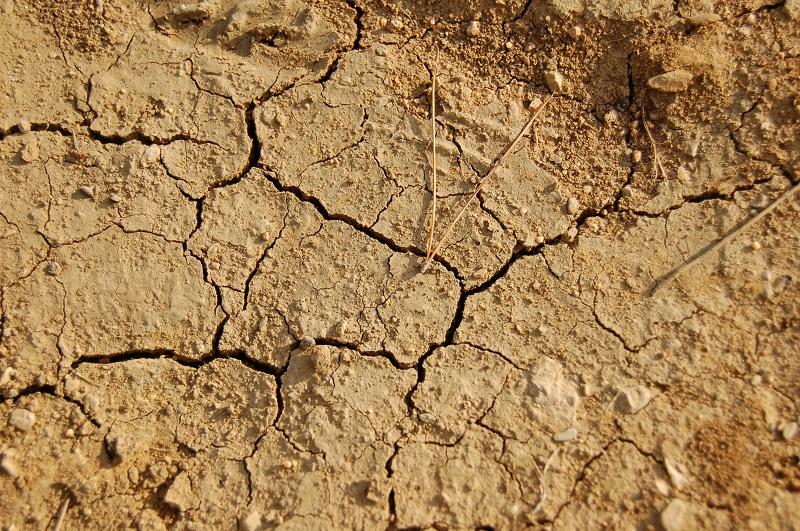 Foto MeteoWeb - Siccità in Sardegna